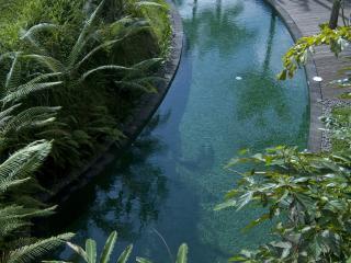 Circular Leisure Pool