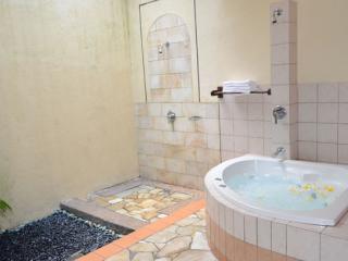 Jacuzzi Resort Room Bathroom